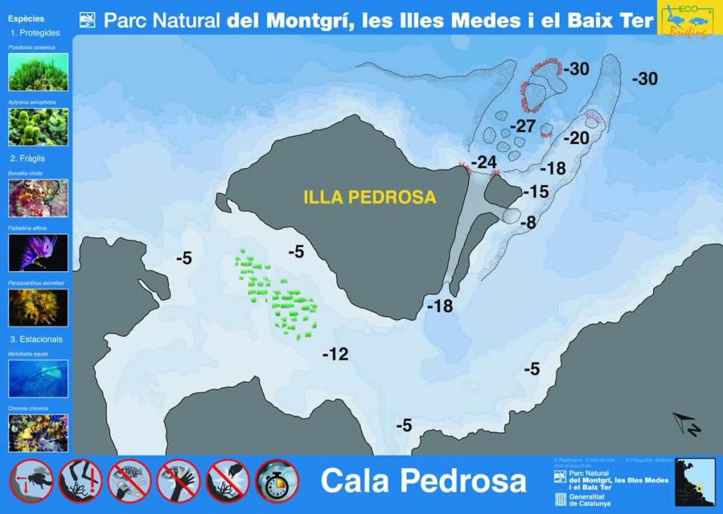 Punto de buceo Cala Pedrosa en la Costa del Montgrí