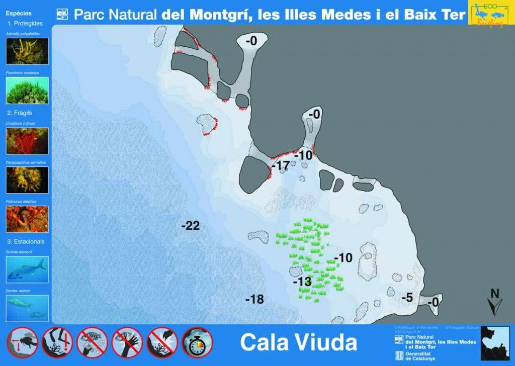 Punto de buceo Cala Viuda en la Costa del Montgrí