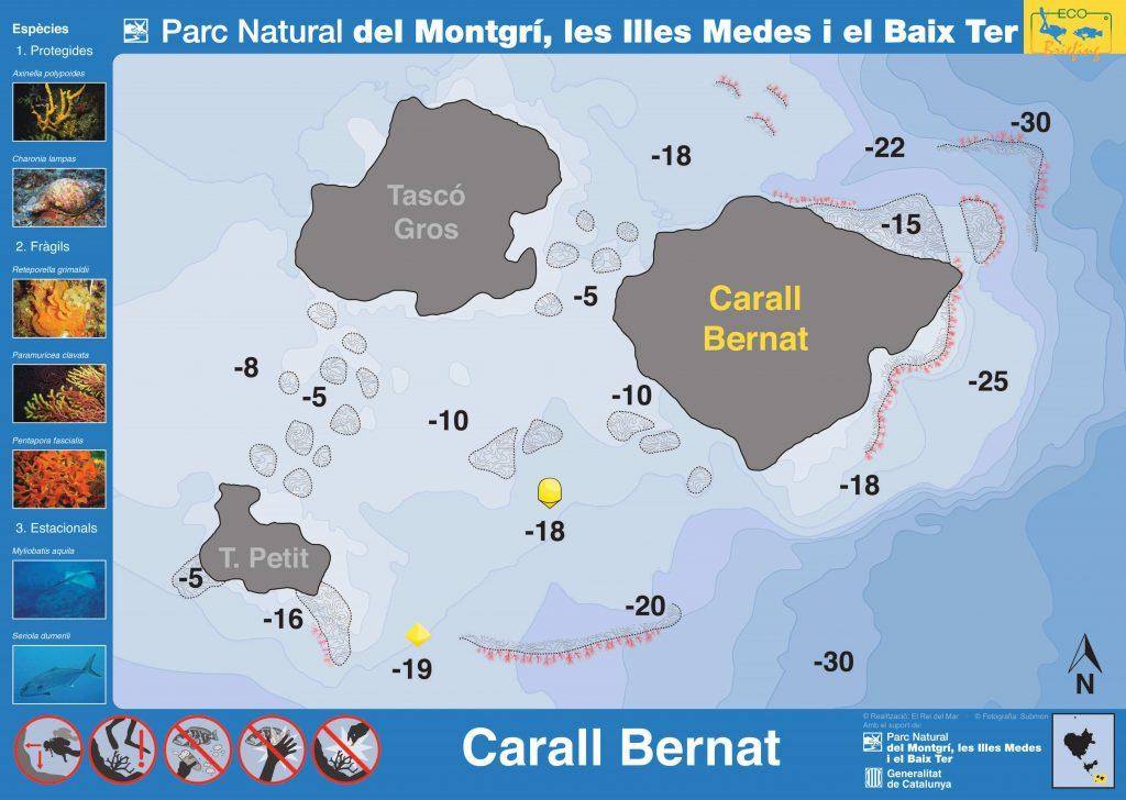Punto de buceo Carall Bernat en las Islas Medas