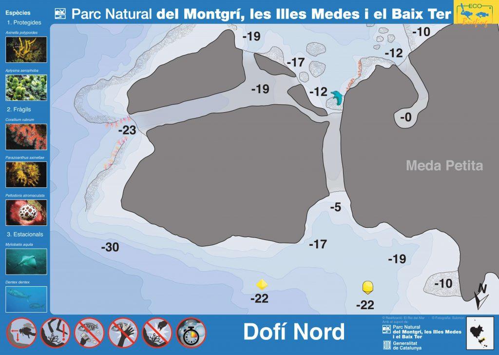 Punto de buceo Dofi Nord en Islas Medas