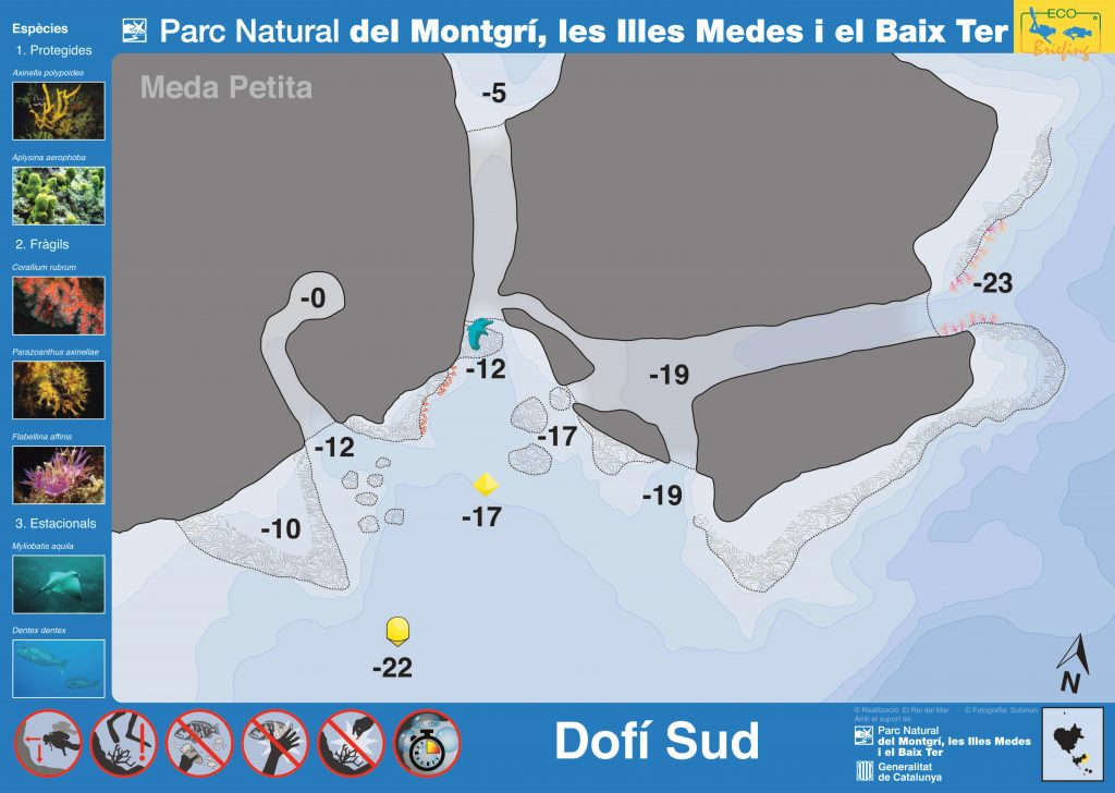 Punto de buceo Dofi Sud en Islas Medas