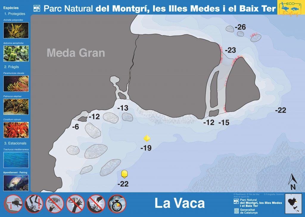 Punto de buceo La Vaca en las Islas Medas