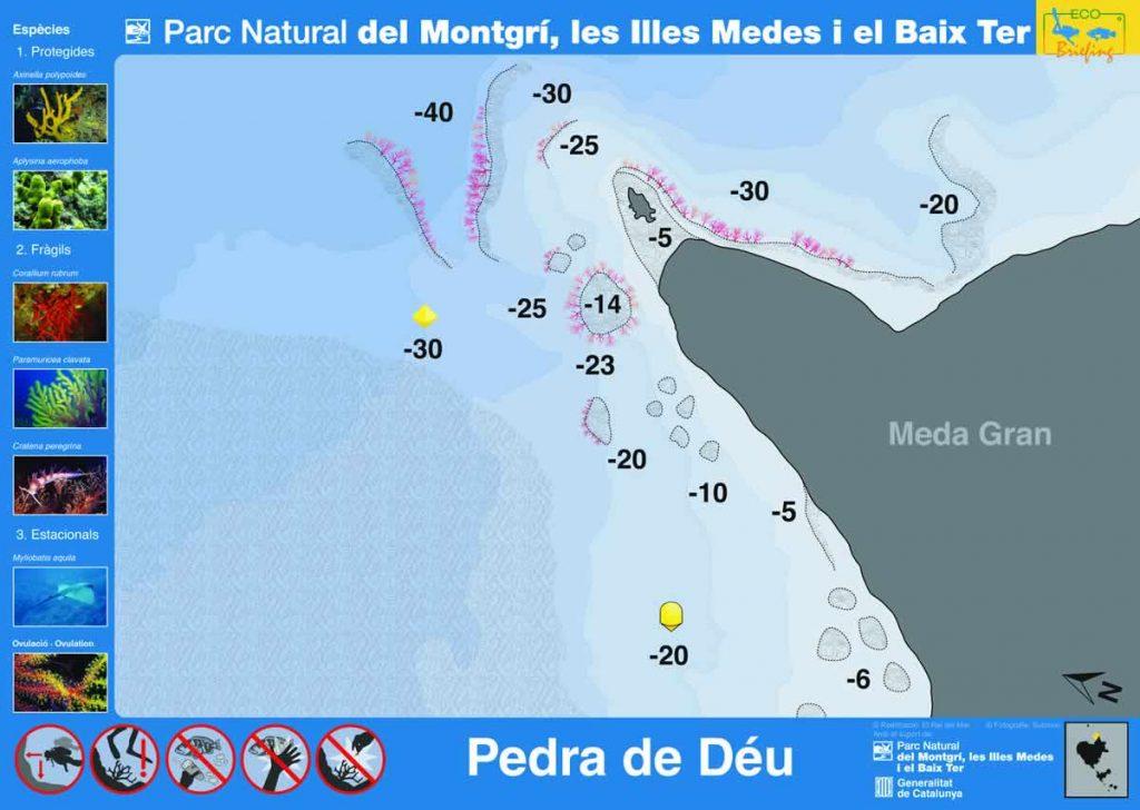 Punto de buceo Pedra de Deu en las Islas Medas