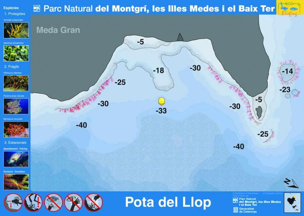 Punto de buceo Pota de Llop en las Islas Medas