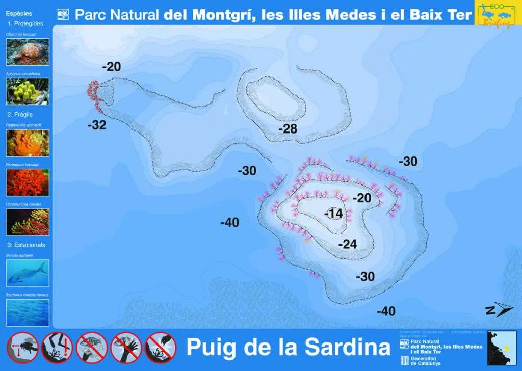 Punto de buceo Puig de la Sardina en la Costa del Montgrí