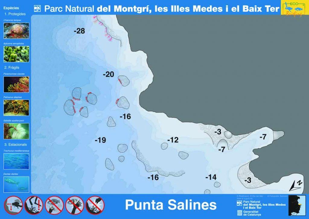 Punto de buceo Punta Salines en la Costa del Montgrí