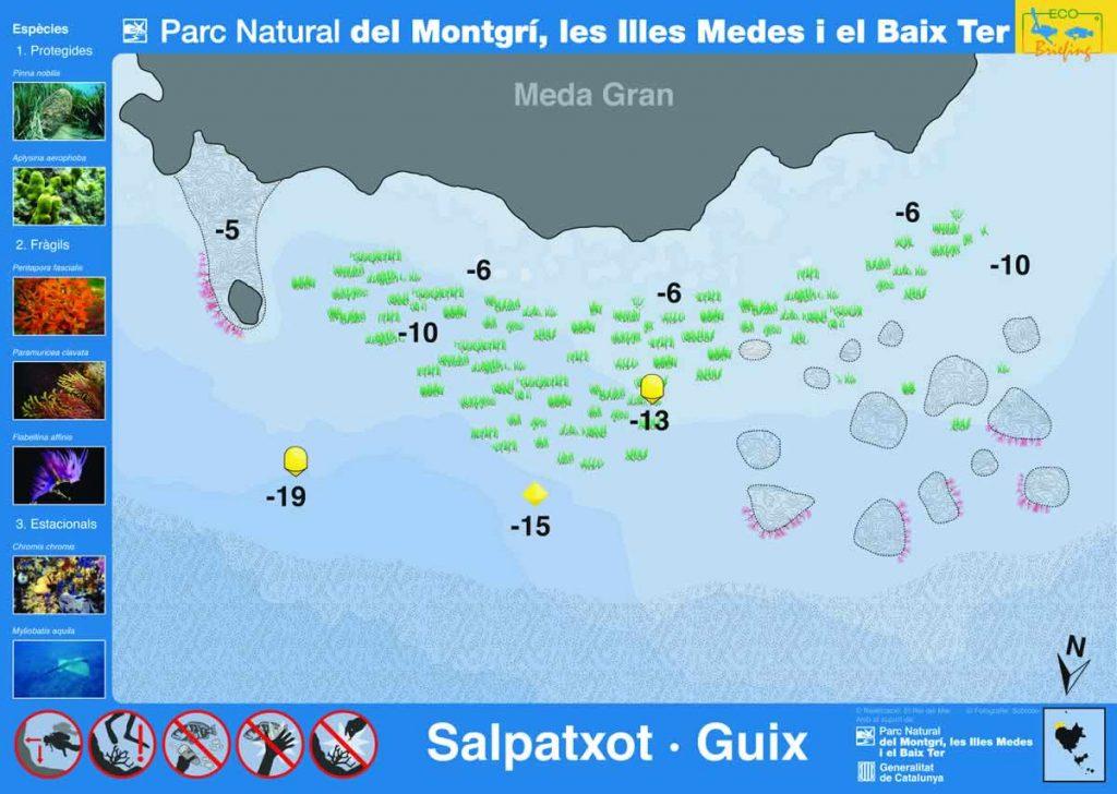 Punto de buceo Salpatxot Guix en las Islas Medas