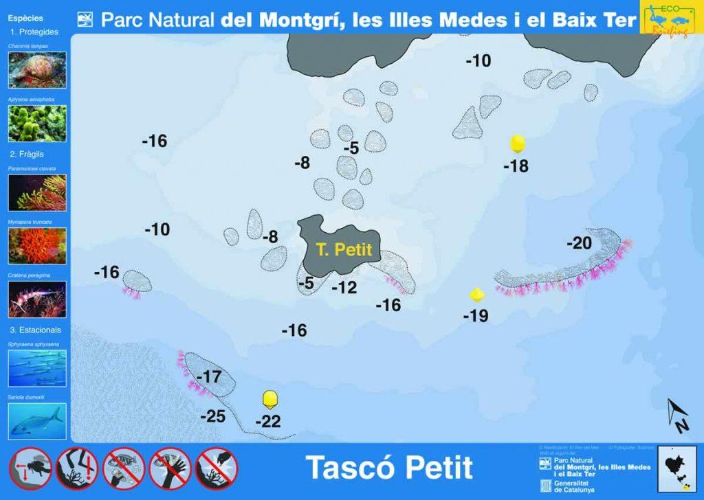 Punto de buceo Tasco Petit en las Islas Medas