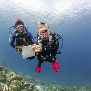 Curso PADI Master Scuba Diver