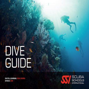 Dive Guide xalocdivingcenter 600×600